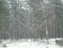 и падал снег