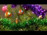 Поздравление с Новым Годом и Рождеством Христовым от Дарьи Осенник
