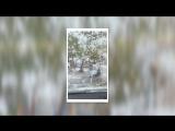 AUTO_AWESOME_MOVIE_1_20180202_112509.mp4