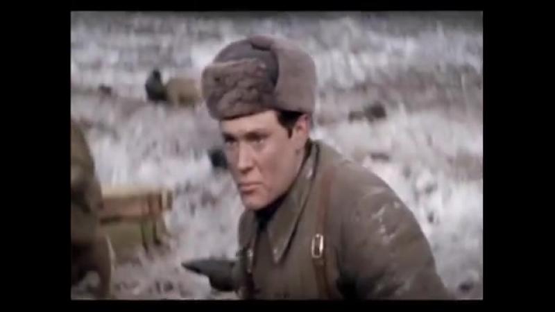 Александр Харчиков. Чуть седой, как серебряный тополь