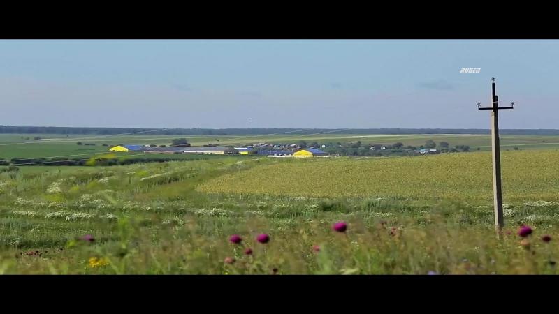 Песняры - Выходил на поля молодой агроном (клип)