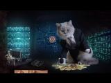 Криптокотто #2: Биткоин-кошелек от Гуччи