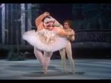 Дуэт Рудольфа Нуриева и мисс Пигги в балете