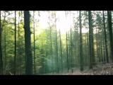 Dash Berlin with ATB vs. Niki and The Dove - DJ, Ease My Apollo Road (Dave Diamond Mashup)