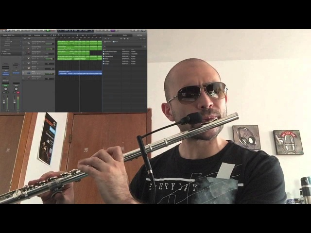 Summertime flute cover by SharpEye (Performed and arranged by SharpEye)