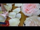 Роза Часть 2