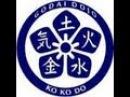 KoKoDo kyu shin kai Ju Jutsu - pokaz samoobrony - Godai Dojo Bydgoszcz - 08.03.2013