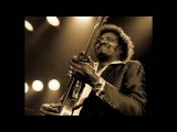 Albert Collins - Lights Are On But Nobody's Home