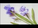 DIY How to make Paper Iris flowers from crepe paper II Hoa diên vỹ giấy nhún