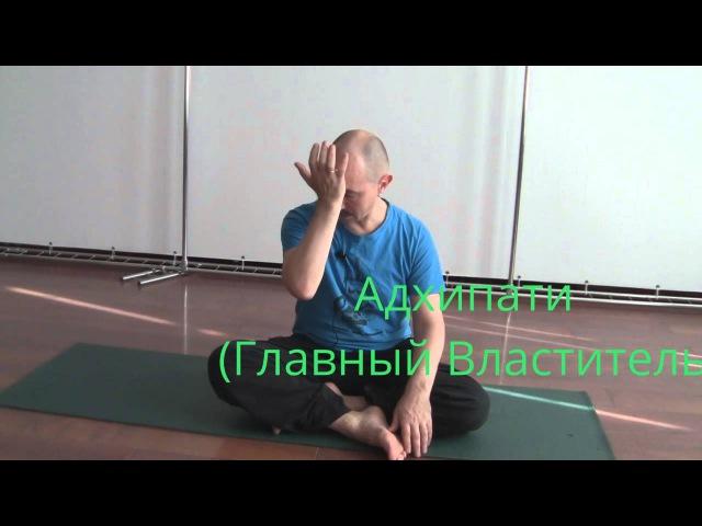 Марма терапия массаж активных точек Часть1 Прокунин Николай
