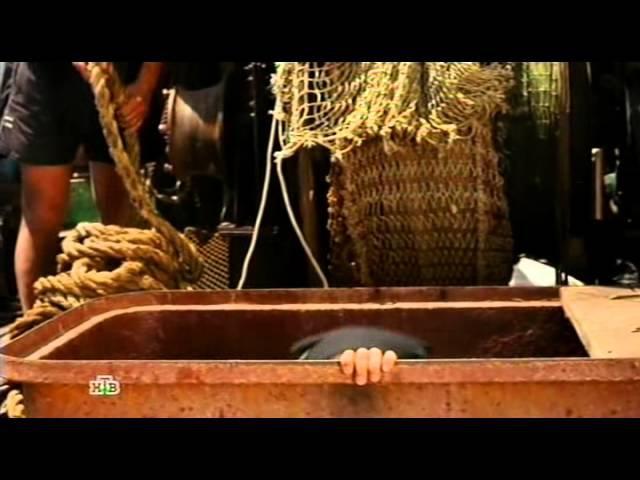 Береговая охрана (1 сезон, 1 серия) 2013