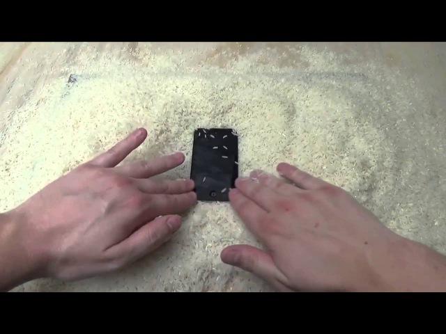 Как починить iPhone, который упал в воду ( как посушить айфон)