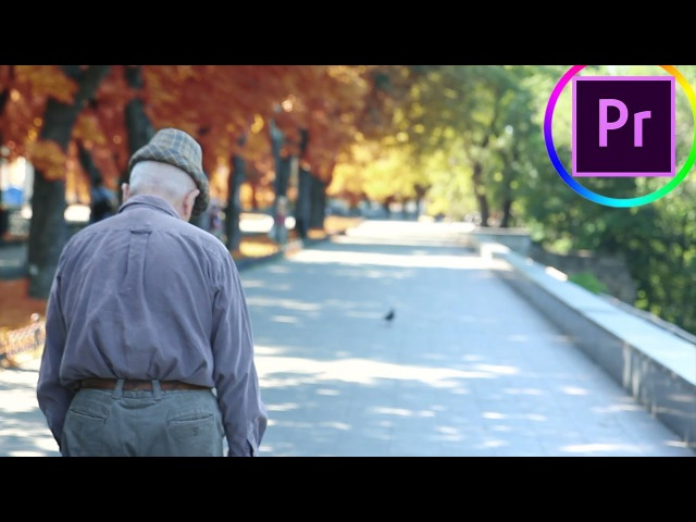 How to make Leaves Change COLOR from Summer to Fall Autumn in Adobe Premiere Pro (CC 2017 Tutorial)