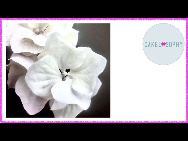 How to make Gumpaste and Clay Hydrangea