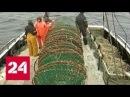Тайна исчезновения Востока кому выгодна смерть моряков - Россия 24