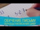 Обучение письму Образцы написания цифр оформления примеров и задач