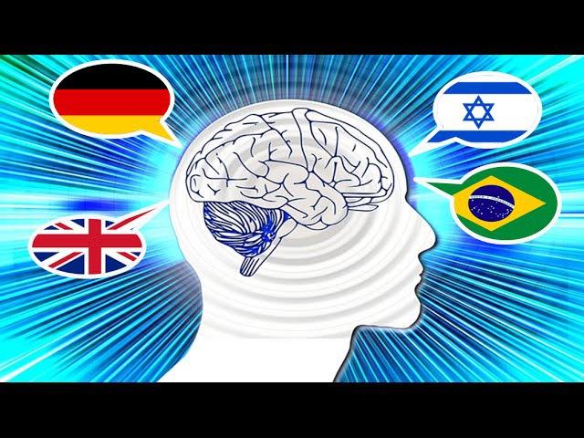 Como funciona o cérebro quando aprendemos uma nova língua?