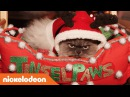 Lizzy Greene Riele Downs QA w/ Duncan the Cat as Tinselpaws! 🐱🎄 Tiny Christmas Nick