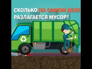 Сколько на самом деле разлагается мусор