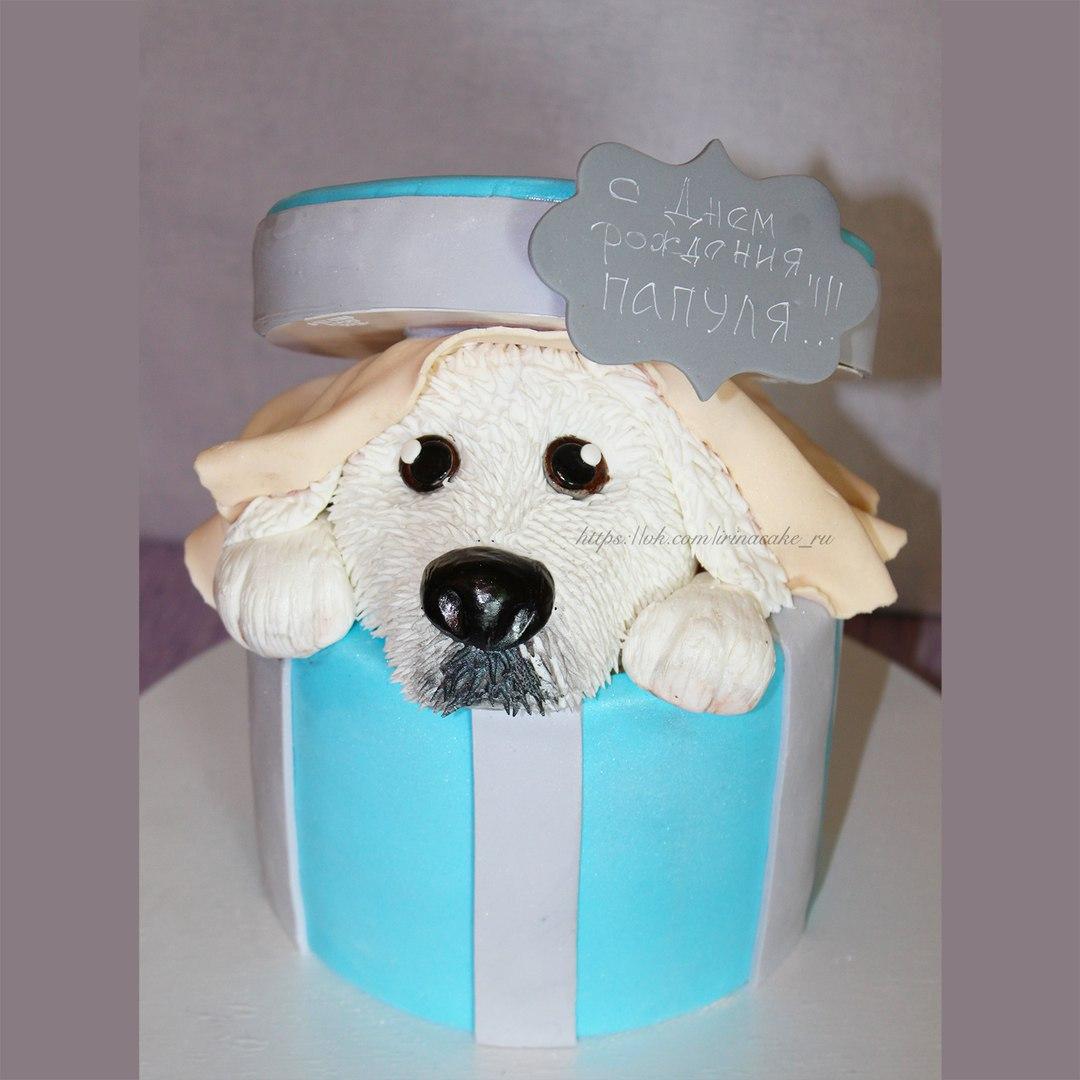 Торт с собакой (арт. 0013)