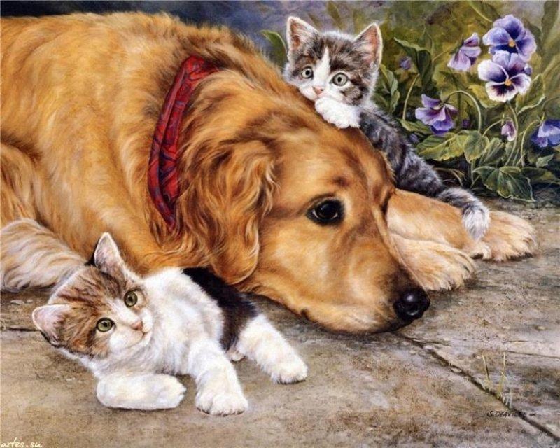 Метод чтобы быстро и выгодно продавать домашних животных ( котят и щенков) .  6Nbu5oKzV30