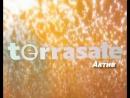Terrasale Актив