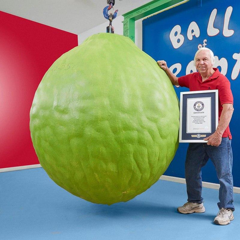 OB0 DECGCIU - Фотографии из Книги рекордов Гиннеса за 2018