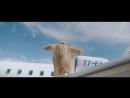 Мот - Побег из шоубиза - Пролетая над коттеджами Барвихи