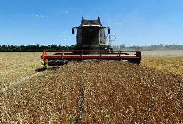 Россия установила рекорд по экспорту пшеницы http://ekportal.ru/page-