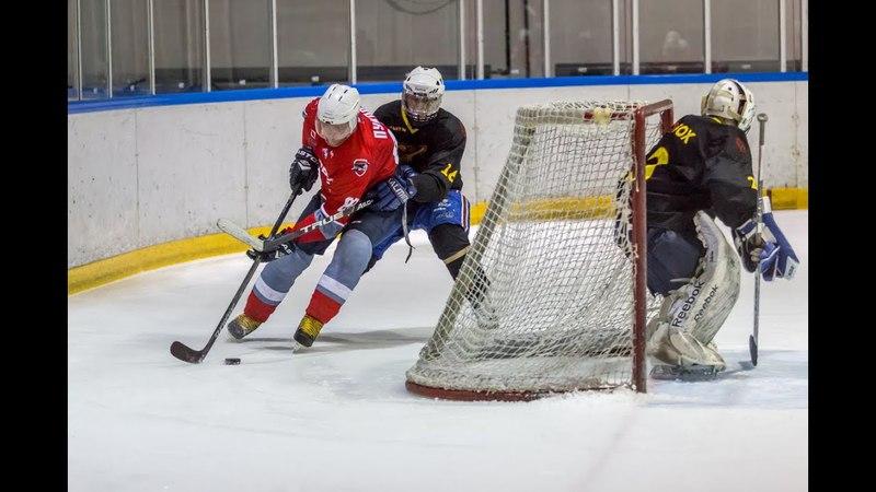 19.03.2018 НХЛ. 1/2 финала.