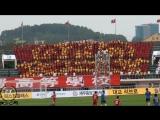 South Korea Cheering soccer game