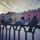 Дмитрий Витушкин фото #47