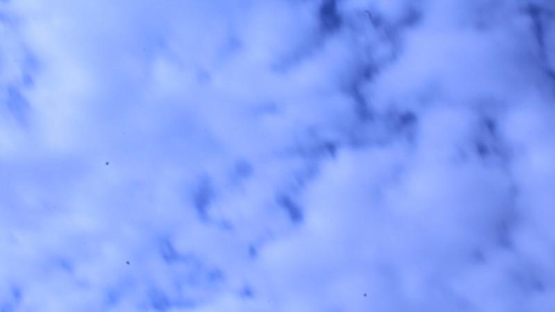 Кипр. Сэм. Январь 2018. На велике к Белым скалам. ч.1
