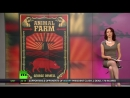 Big Brother is watching you Abby Martin donne son explication de texte de 1984 de George Orwells