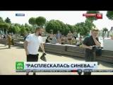 Журналист НТВ получил в лицо в прямом эфире от ВДВ