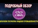 Обзор Cibus Блокчейн платформа для пищевой промышленности