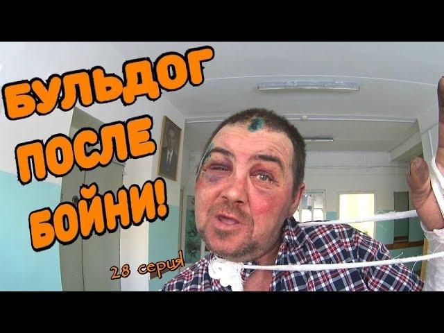Один день среди бомжей / 28 серия - Бульдог после бойни! (18)
