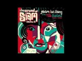 Various The Sound Of Siam Vol 2 Molam &amp Luk Thung Isan From North-East Thailand 1970-82 Music