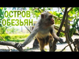 Остров обезьян - Вьетнам Нячанг, Monkey Island