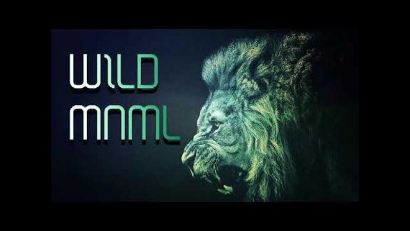 Lion Beats 🔥 Wild Minimal 2018 [ MINIMAL TECHNO TECH-HOUSE ]