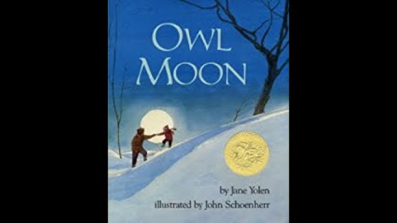 Owl Moon by Jane Yolen (Author, Narrator),