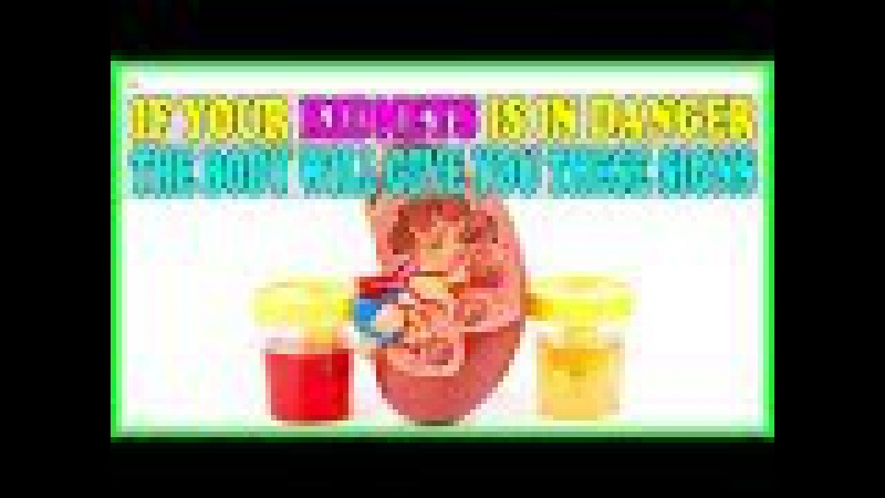 If Your Kidney Is In Danger, The Body Will Give You These 7 Signs! - Signs Of Kidneys Failure
