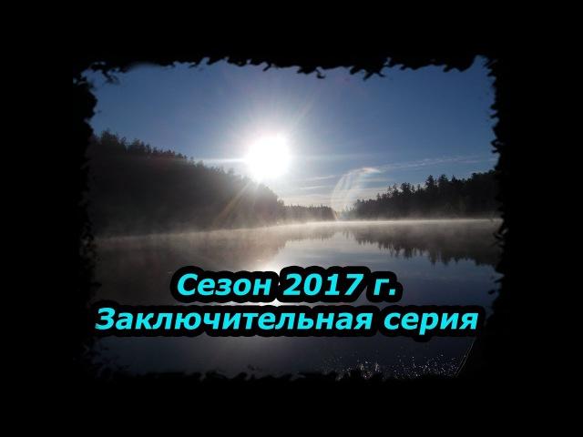 Сезон 2017 часть 9/9-4 месяца в Тайге.(Заключительная.Бешеные лисы)