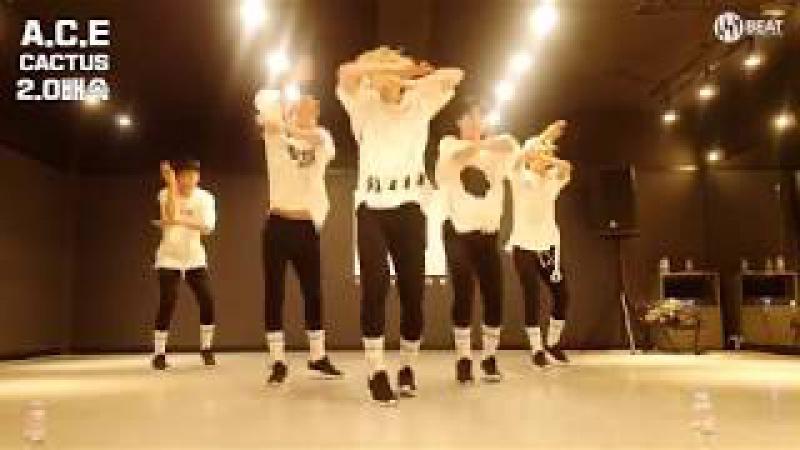 A.C.E(에이스) - 선인장(CACTUS) MV 2x 1.5x Dance ver.