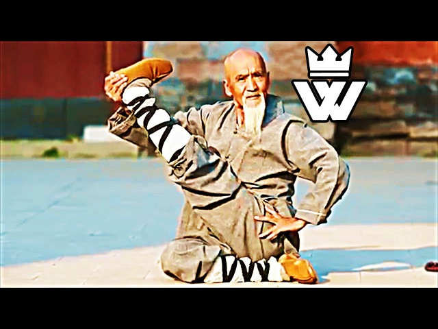 KUNG FU in REALITY - SHAOLIN Style