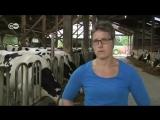 Mit der Kamera im Kuhstall