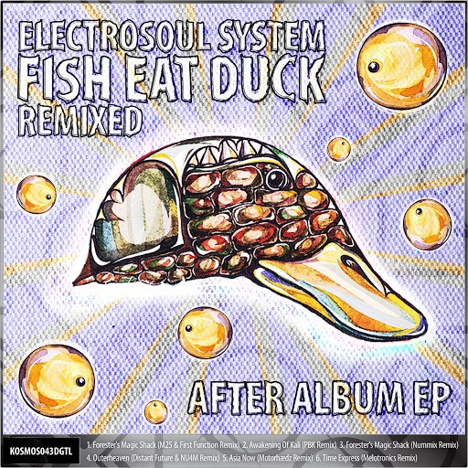 Electrosoul System альбом Fish Eat Duck Remixed After Album EP