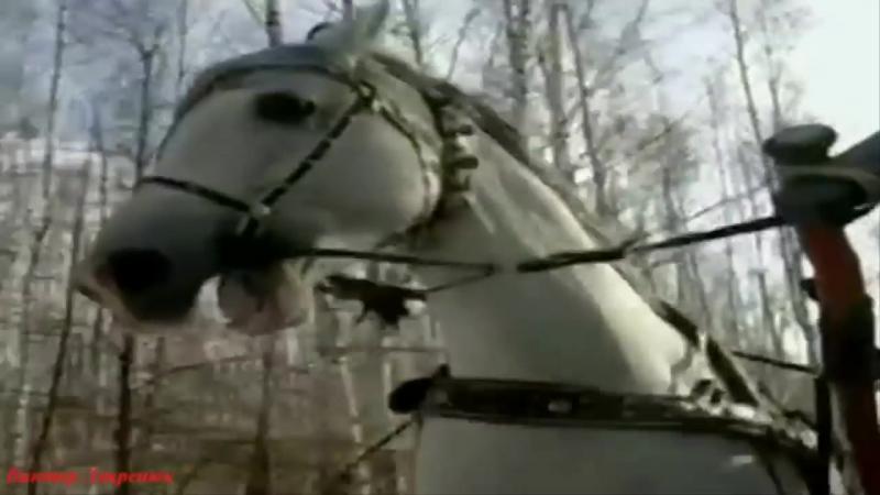 Романс Ямщик не гони лошадей.В исполнении Джемма Халид