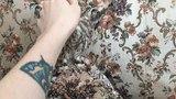 Домовой сыч Мускат, почесоны, совы нежные и всё такое - little owl scratch