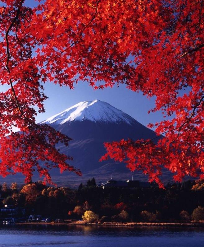 5vMmsueh8Hw - Фудзияма в осеннем пейзаже